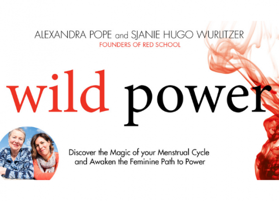 Menstrual Cycle Awareness Through The Book, Wild Power